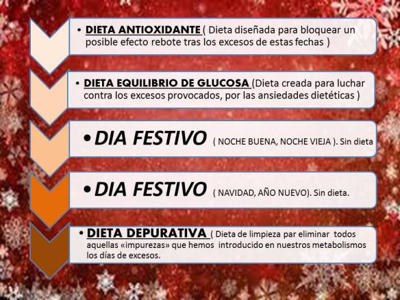plan de navidad 2014